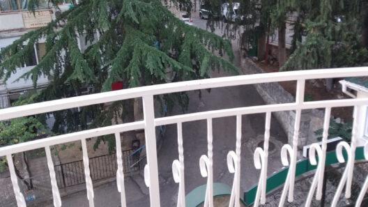 №37 вид с балкона