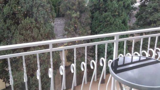 lux-№48 вид с балкона