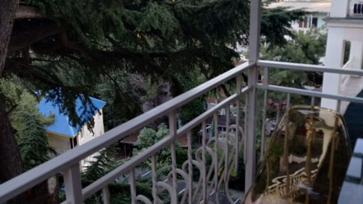 premiumluks-№52 вид с балкона